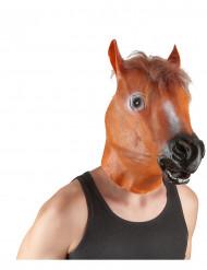 Maske Pferdekopf