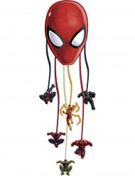 Spiderman Web Warriors™-Piñata