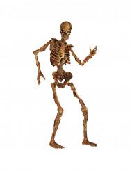 Bewegliches Skelett Dekofigur Halloween 180 cm im verwesten Zustand