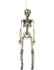 Hängedekoration Goldenes Skelett 42 cm Halloween