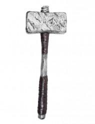 Ein silberner Hammer für Erwachsene!