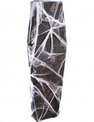 Sarg mit Spinnennetz - Halloween