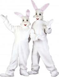 Hasen-Verkleidung für Erwachsene Maskottchen
