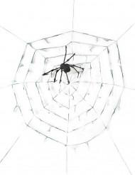 Riesiges Spinnennetz mit Spinne 290 cm