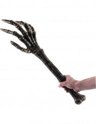 Hand Skelett Spectrum
