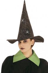 Hexen Hut mit Spinnennetz und leuchtenden Spinnen