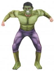 Verkleidung Hulk - Film 2