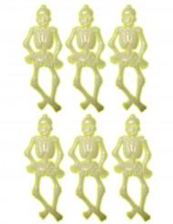 6 kleine phosphoreszierende Skelette - Halloween