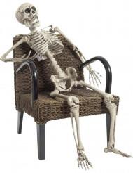 Skelett - Halloween
