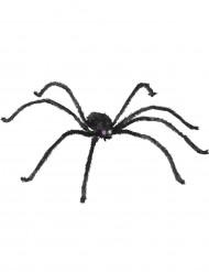 Luminöse Spinne