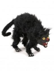 Halloween Katze in Schwarz
