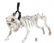 Hundeskelett für Halloween an 45 cm langer Leine