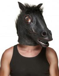Pferdekopf Latex-Maske für Erwachsene