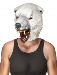 Eisbären Maske für Erwachsene aus Latex