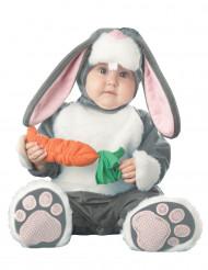 Kaninchen-Kostüm für Babys - Premium