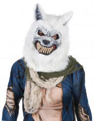Erschreckende Wolfsmaske für Erwachsene