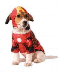 Iron Man™ Kostüm für Hunde
