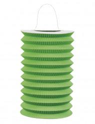Lampion aus Papier in grün