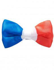 Frankreich Fan Fliege