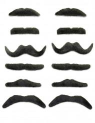 12 schwarze Schnurrbärte