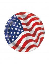 8 Kleine USA Teller
