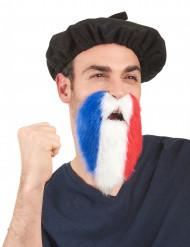 Fan-Bart Frankreich