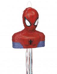 Spider Man™ Pinata