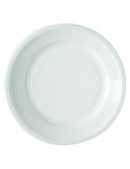50 Plastikteller - weiß