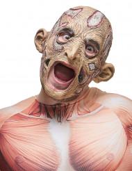 Latex-Maske eines verfaulten Gesichtes
