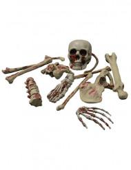 Halloween-Dekoration Blutige Skelettknochen