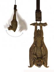 Leuchtende und lärmende Halloween-Dekoration Fledermaus zum Aufhängen