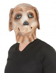 Hundemaske aus Latex