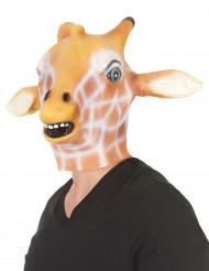 Giraffen Latex Maske für Erwachsene