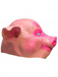 Schweine Maske aus Latex für Erwachsene