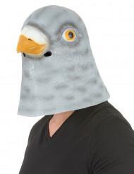 Taubenmaske für Erwachsene