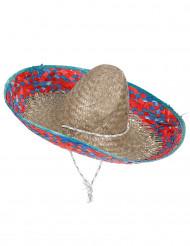 Mexikanischer Sombrero für Erwachsene mit Krempe in Rot und Blau