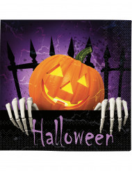 20 Halloween-Servietten Kürbis orange-lila-schwarz