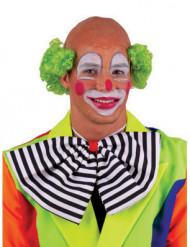 Grüne Clownsperücke für Erwachsene
