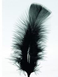 100 schwarze Federn