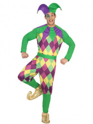 Harlekin-Kostüm für Erwachsene lila-grün