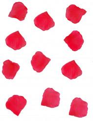 150 rote Blüten aus Stoff