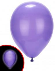 5 LED-Luftballons Illooms ® lila