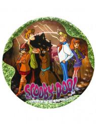 5 Teller Scooby-Doo™ 23 cm