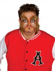 Werwolf Bart Augenbrauen und Herren