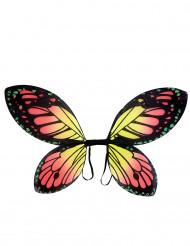 Schmetterlingsflügel farbig für Mädchen