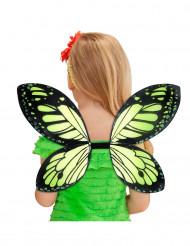 Flügel Schmetterling schwarz-grün Mädchen