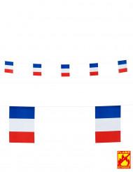Frankreich Fähnchen Party-Girlande 15 x 20 cm