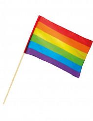 Regenbogen Flagge 30 x 45 cm