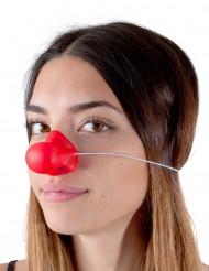 Clownsnase rot
