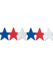Sternengirlande USA